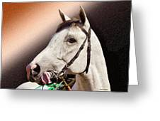 Phantom Lover Race Horse Looking On Greeting Card