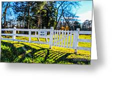Phelps Cemetery  Greeting Card