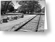 Phelps Ny Train Station In Black And White Greeting Card