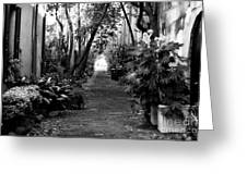 Philadelphia Alley Greeting Card