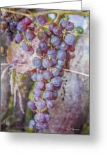 Phil's Grapes Greeting Card