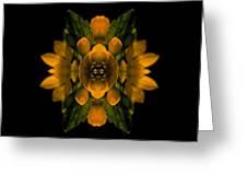 Phlower Phantasy Greeting Card