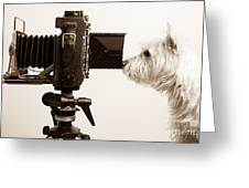 Pho Dog Grapher Greeting Card