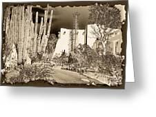 Phoenix Botanical Garden Path Greeting Card