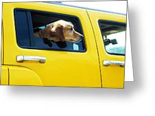 Yellow With Lab Greeting Card