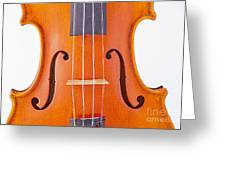 Photograph Of A Viola Violin Middle In Color 3374.02 Greeting Card