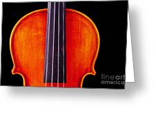 Photograph Or Picture Violin Viola Body In Color 3367.02 Greeting Card