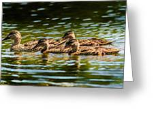 Photography Painting Of Mother And Her Ducklings Greeting Card