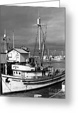 Phyllis Purse-seiner Monterey Wharf California  Circa 1940 Greeting Card