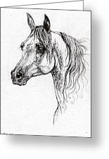 Piaff Polish Arabian Horse Drawing 1 Greeting Card