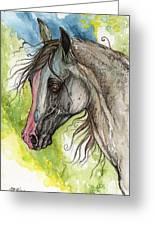 Piber Polish Arabian Horse Watercolor Painting 3 Greeting Card