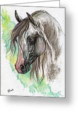 Piber Polish Arabian Horse Watercolor Painting Greeting Card