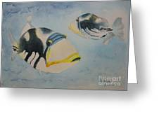 Picasso Triggerfish Greeting Card