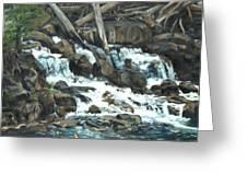 Picnic At The Falls Greeting Card