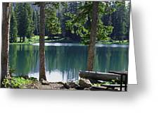 Picnic By The Lake Greeting Card