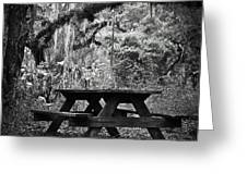 Picnic In The Woods Greeting Card