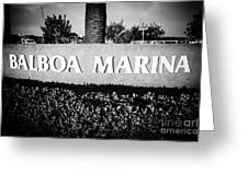Pictue Of Balboa Marina Sign In Newport Beach Greeting Card