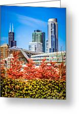 Picture Of Chicago In Autumn Greeting Card by Paul Velgos