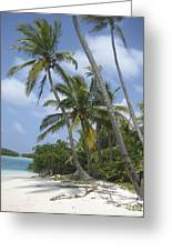 Picture Perfect Paradise Greeting Card