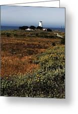 Piedras Blancas Lighthouse Greeting Card