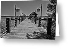 Pier At Fort Wilderness In Black And White Walt Disney World Greeting Card