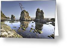Pig And Sows Inlet In Garibaldi Oregon At Low Tide Greeting Card
