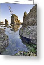 Pig And Sows Rock In Garibaldi Oregon At Low Tide Vertical Greeting Card