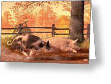 Pig Race Greeting Card