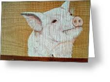 Pig Smile Greeting Card
