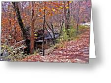 Pigeon Forge River Greeting Card