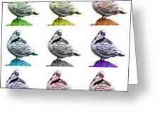 Pigeon Pop Art 5516 - Fs - Wb - M-  Modern Animal Artist James A Greeting Card