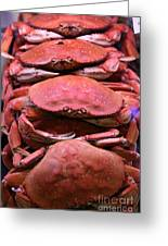 Pile Of Fresh San Francisco Dungeness Crabs - 5d20693 Greeting Card by Wingsdomain Art and Photography