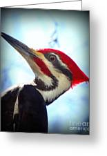 Pileated Close Up Greeting Card