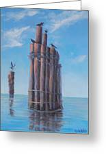 Pilings   Greeting Card by Rich Kuhn