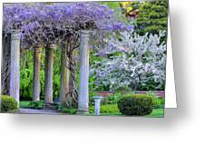 Pillars Of Wisteria Greeting Card