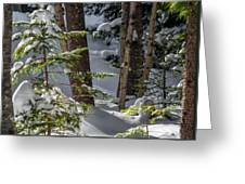 Pillows On Evergreen Greeting Card