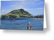 Pilot Bay Mt M 291209 Greeting Card