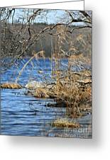 Pine Acres Lake Blues  Greeting Card