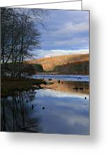 Pine Acres Lake Reflections  Greeting Card