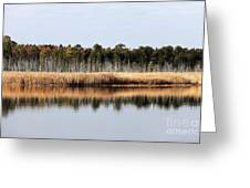 Pine Barrens Reflections Greeting Card