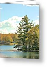 Pine By The Water Greeting Card
