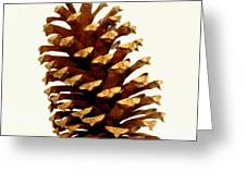 Pine Cone On White Greeting Card
