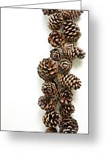 Pine Cones Greeting Card by Edward Fielding