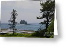 Pine Island Greeting Card