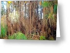 Pine Jungle Greeting Card
