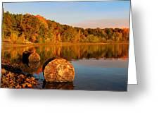 Pine Lake Reflection 3 Greeting Card