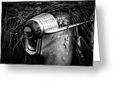 Pine Needles On Tail Light In Black And White Greeting Card