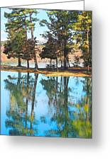 Pine Tree Water Reflections Greeting Card