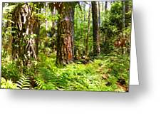Pine Trees And Ferns Greeting Card