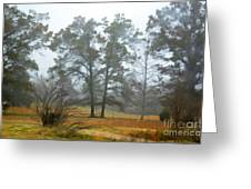 Pine Trees In Mist - Digital Paint 1 Greeting Card